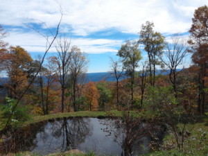 Cranberry Mt Lodge pond-001