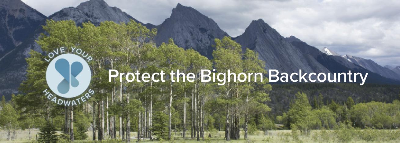Bighorn backcountry