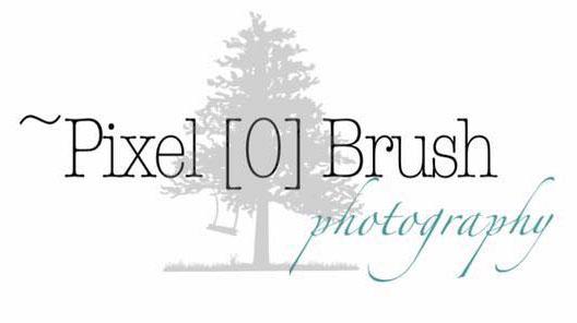 PixelBrush2.jpg