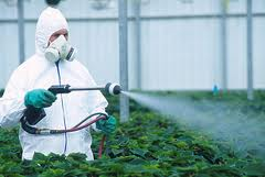 spraying_on_crops_in_suit.jpg