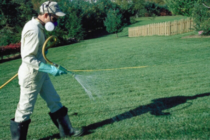 spraying_on_yard.jpg