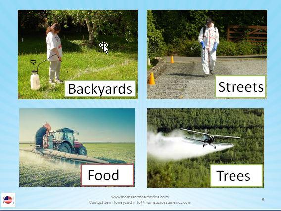 Roundup_sprayed_on_many_areas.jpg