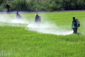 spraying_fields_three_men.jpg