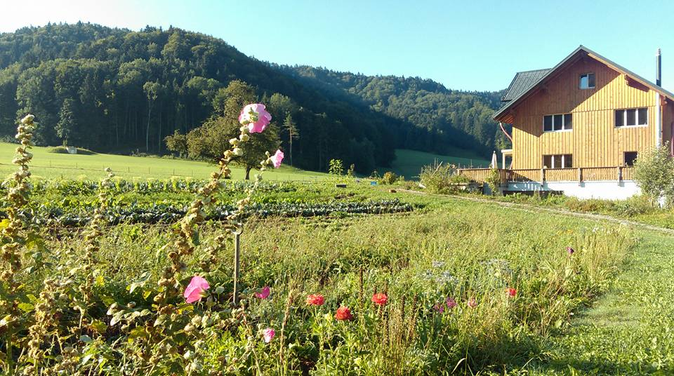 garden_and_house_switzerland.jpg