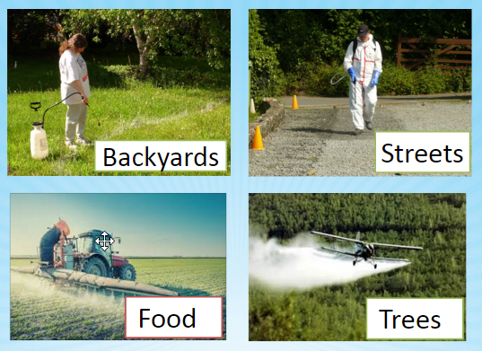 Glyphosate_spraying.png