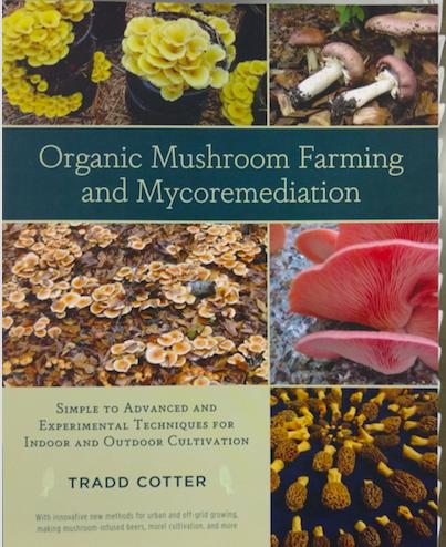 mushroom_book.png