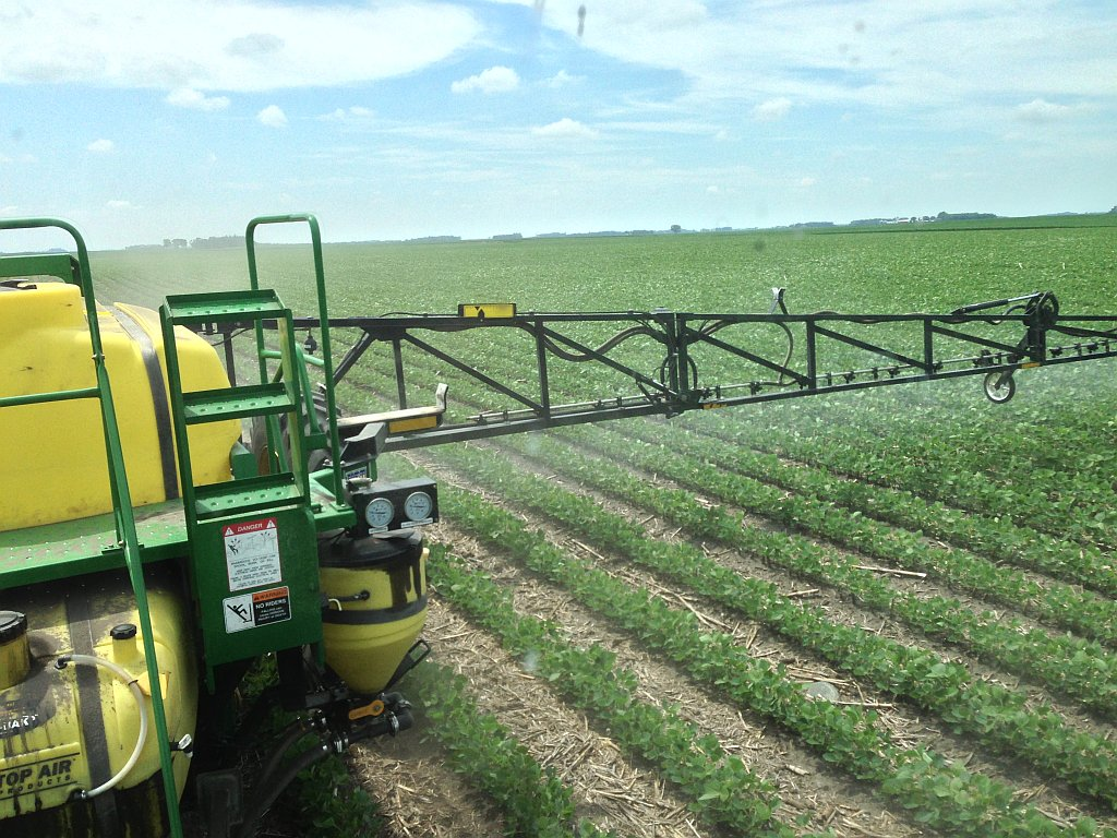 Spraying-Roundup-on-beans-3.jpg