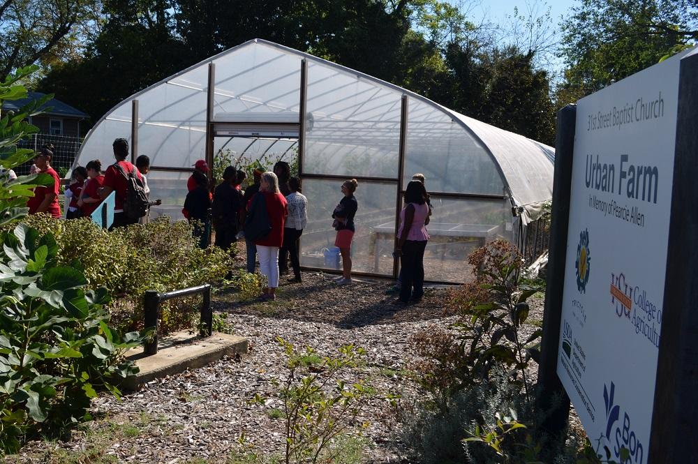 Participants learn about urban farming at the 31st Street Baptist Church Urban Farm.