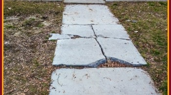A picture of a cracked sidewalk