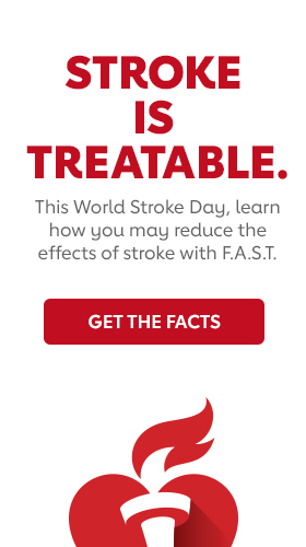 Link to World Stroke Day Website