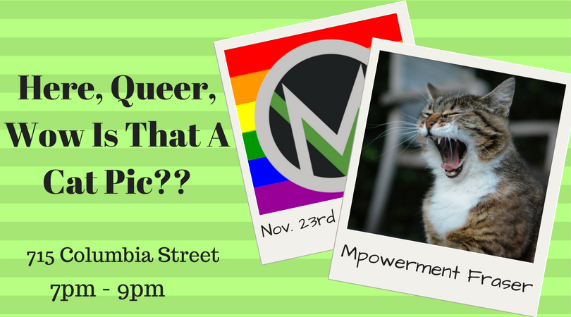 Here__Queer__Wow_Is_That_A_Cat_Pic--_-_facebook_(1).png