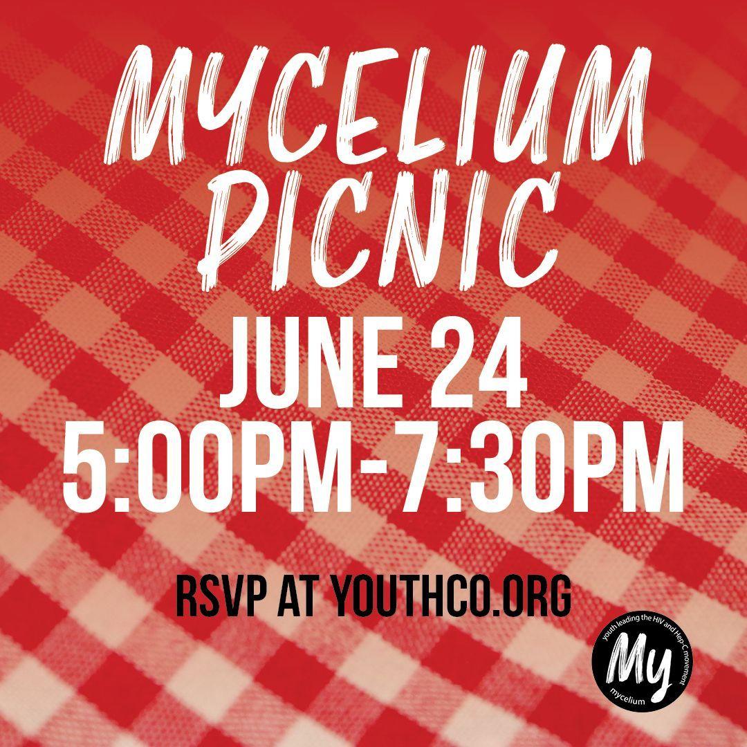 Mycelium picnic graphic