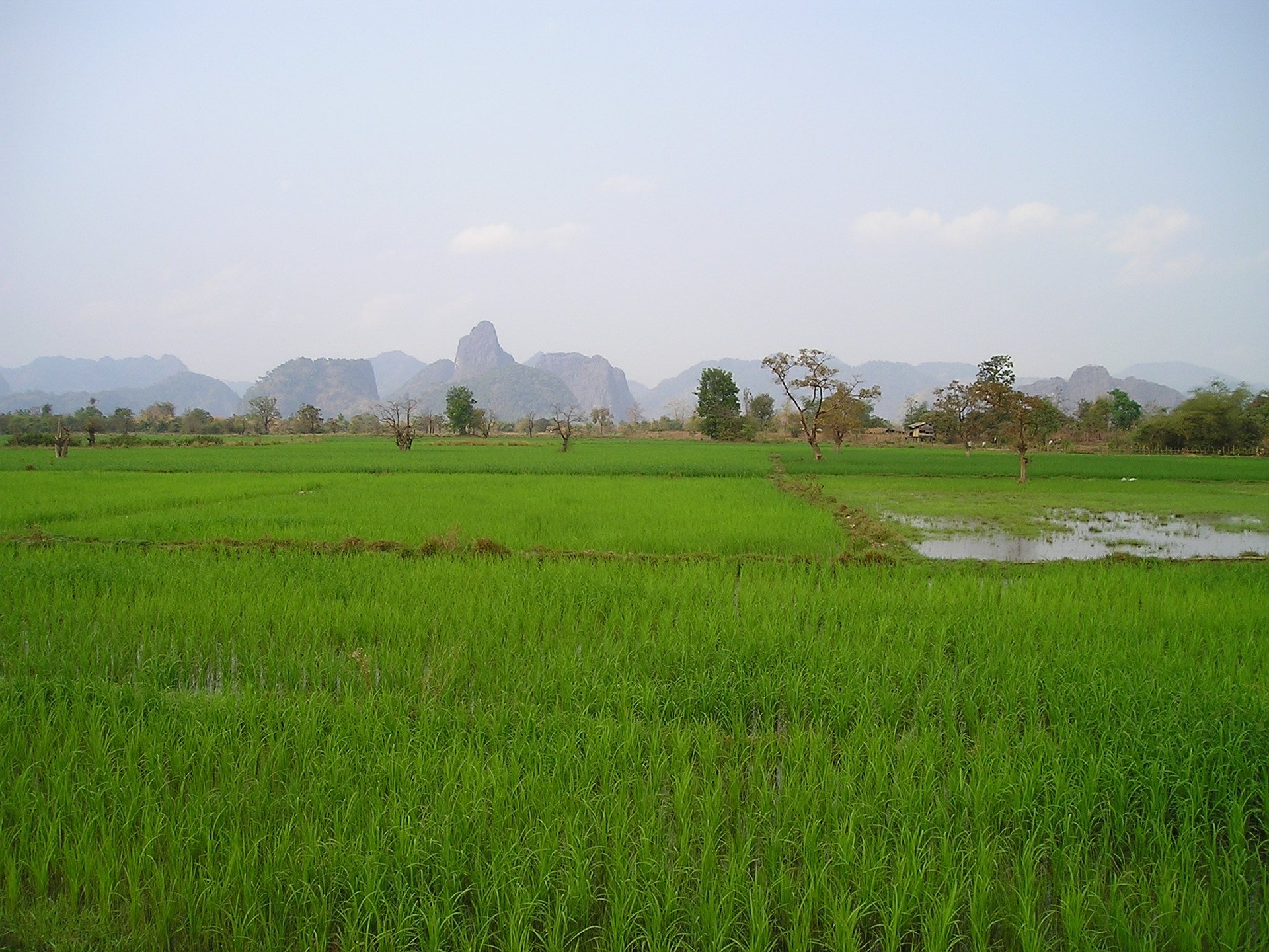 laos-451_1920.jpg