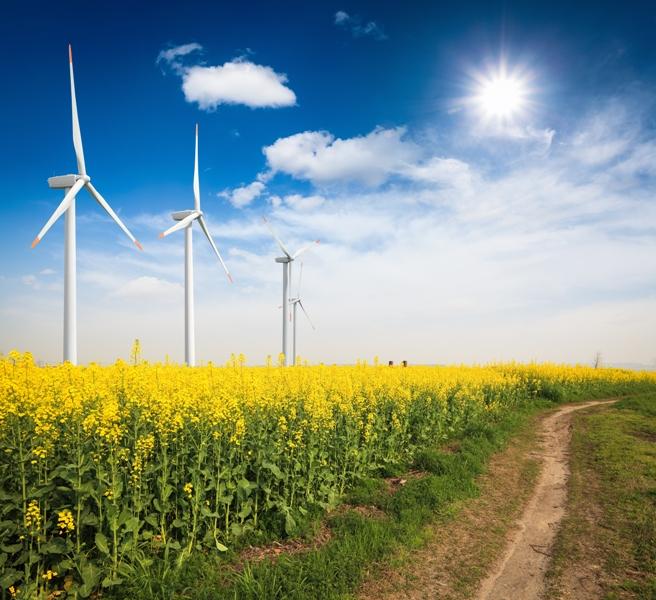 wind_solar_energy_chungking_fotolia_jpg.JPG