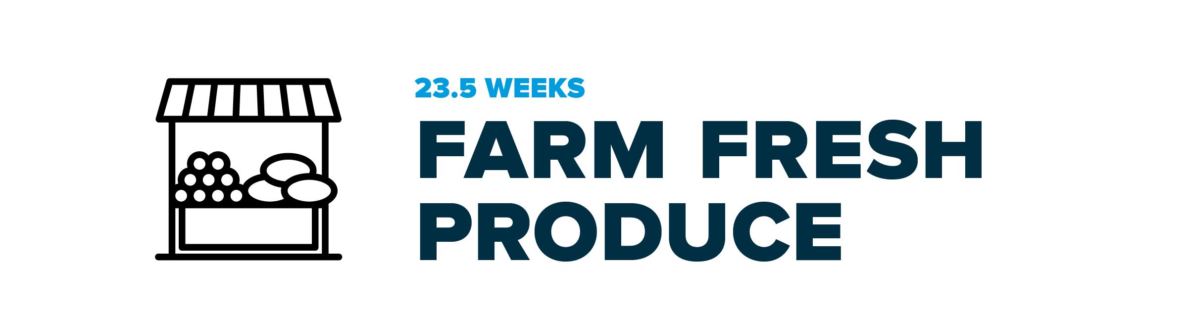 Infographic-06-farmfresh.png