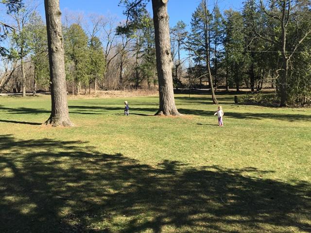 running_by_pine_trees_small.jpg