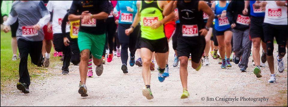 run_pic.jpg