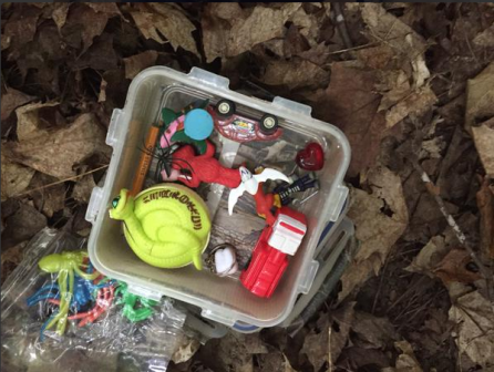 geocache_in_Ottawa2_small.png