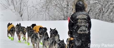 Credit-Sonny-Parker-dog-mushing-winter-adventure-wilderness-1.jpg